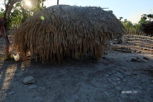 rumah-adat-timor-soe-22