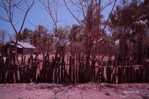 rumah-adat-timor-soe-6