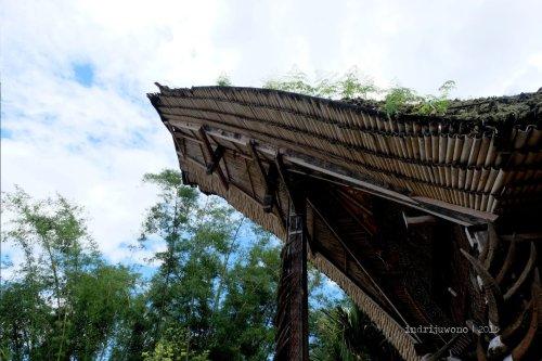 5-toraja-kete-kesu-tongkonan-atap-bambu