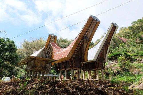 tongkonan yang mudah ditemukan di desa