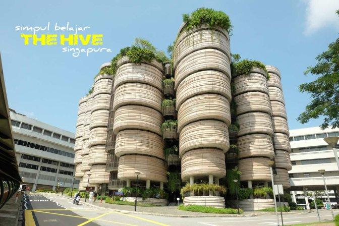 simpul belajar The Hive singapura
